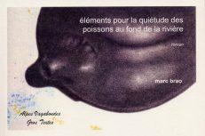 Brao Marc - Éléments pour la quiétude des poissons au fond de la rivière