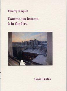 Roquet Thierry - Comme un insecte à la fenêtre