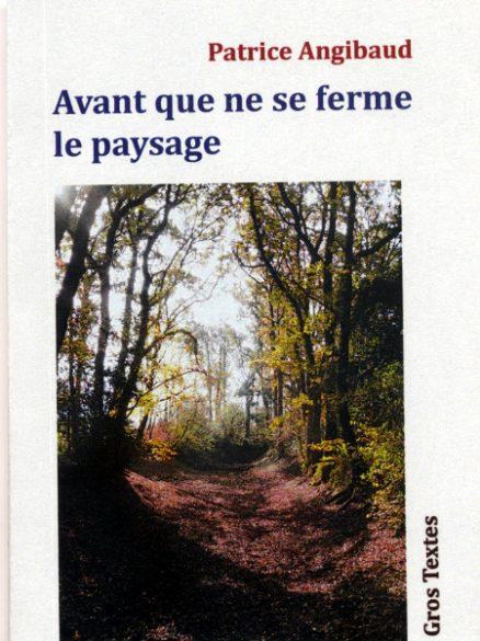 Angibaud patrice - Avant que ne se ferme le paysage